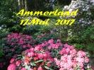 Ammerland_1